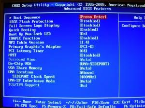 MSI 890GXM-G65 BIOS - Advanced BIOS Features