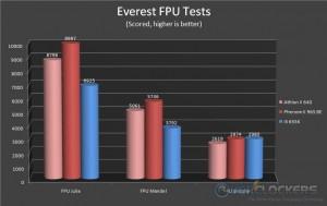 Everest FPU Tests