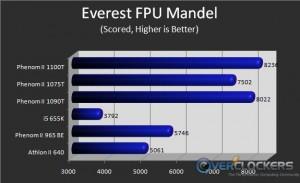 Everest FPU Mandel