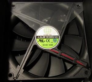 The fan.