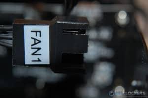 Labeled Fan Connectors