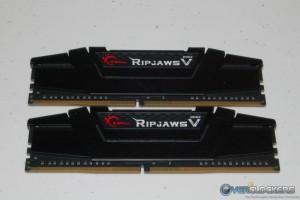 Ripjaws V in Black